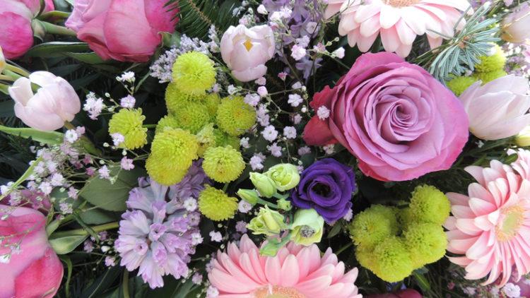 Blumen erzählen